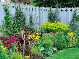 DIY Garden Giveaway CASH Sweepstakes