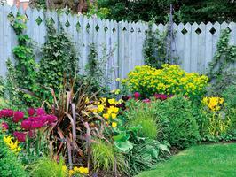 DIY Garden Giveaway CASH Sweepstakes