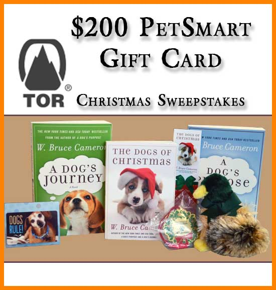 Petsmart Christmas Hours.Win A Petsmart Gift Card For 200 In The Dogs Of Christmas