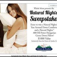 Win a Hungarian Goose Down Pillow Natural Nights Sweepstakes (2)