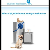 FPL 5000 Dollar Cash Home Energy Survey Contest