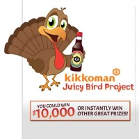 Kikkoman Juicy Bird Project Win 10 thousand Dollars Cash