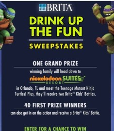 Nickelodeon Sweepstakes win a trip to Orlando, FL