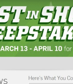 Hulu best in show sweepstakes