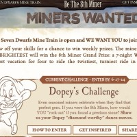 Dinsey Be the 8th Miner Sweepstakes