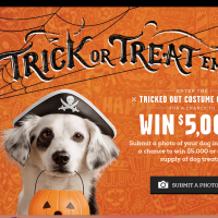 Trick or Treat Em! Pet sweepstakes