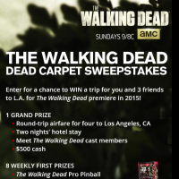 the Walking Dead Sweepstakes code