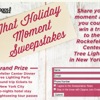 Zappos That Holiday Moment Sweepstakes