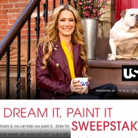 USA Dream it Paint it Sweepstakes
