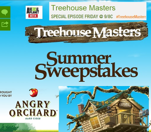 Treehouse Masters Summer Sweepstakes - Sweeps Maniac
