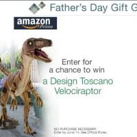 Amazon Father's Day Sweepstakes